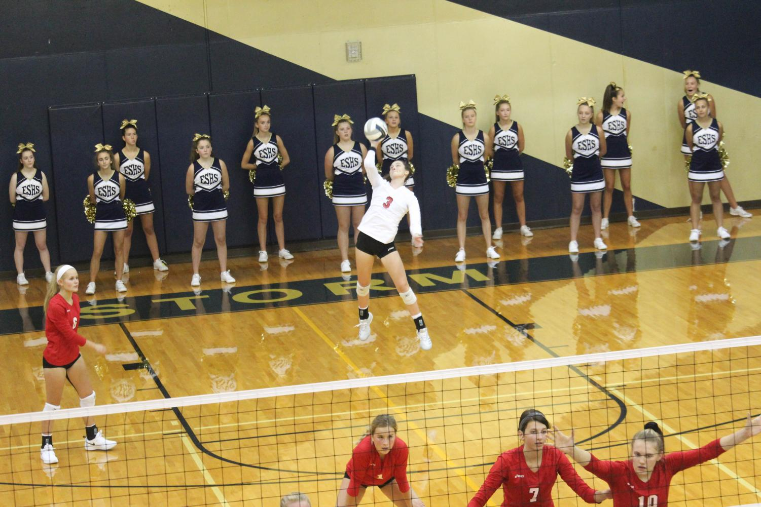 Senior Maggie McElhose serving the ball at the Elkhorn vs. Elkhorn South game.