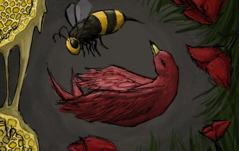 Graphic provided by Elaina Franzen. Artistic depiction of birds and bees.