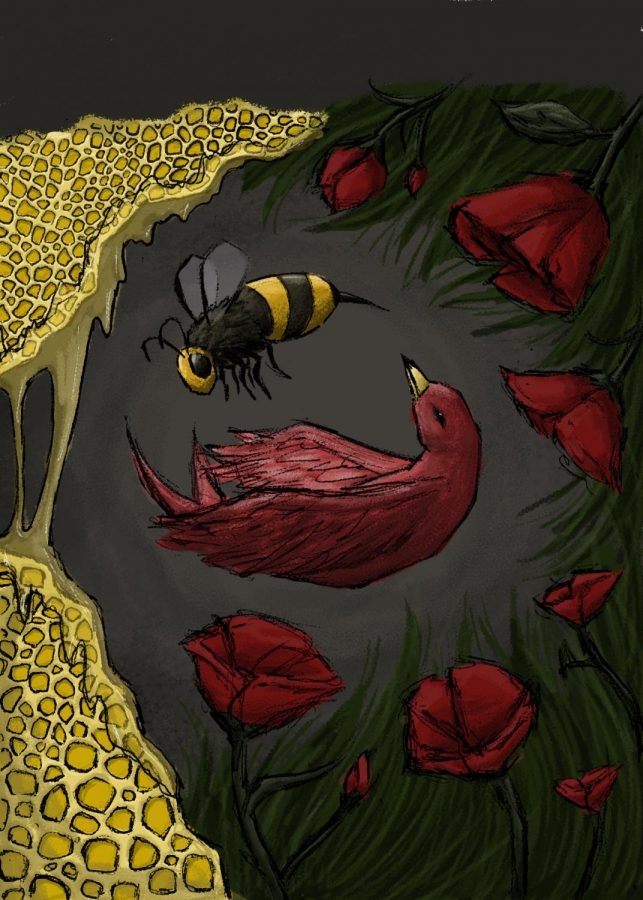 Graphic+provided+by+Elaina+Franzen.+Artistic+depiction+of+birds+and+bees.+