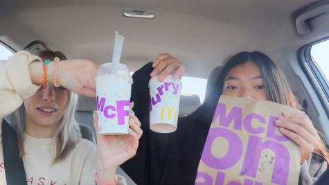 New McDonalds Menu Taste Test